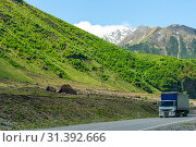 Wagon with a load on a mountain road in a picturesque place in the Caucasus. Стоковое фото, фотограф Константин Лабунский / Фотобанк Лори