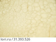 Купить «Onyx wall background. Texture of honey color onyx material», фото № 31393526, снято 15 июня 2018 г. (c) Serg Zastavkin / Фотобанк Лори