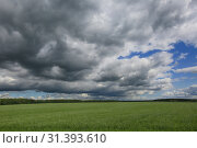Купить «Gray thunderstorm clouds in the blue sky over a green field in summer in Russia», фото № 31393610, снято 3 июля 2019 г. (c) Яна Королёва / Фотобанк Лори