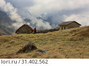 Купить «Traditional stone hut in the high Andes along the Cordillera Real Traverse, Bolivia.», фото № 31402562, снято 1 июня 2019 г. (c) age Fotostock / Фотобанк Лори
