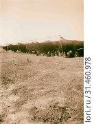 Купить «Ruth story. Bedouin tent. General view (a chieftain's tent). 1940 Middle East», фото № 31460978, снято 29 июня 2018 г. (c) age Fotostock / Фотобанк Лори
