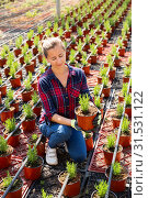 Купить «Female owner of glasshouse growing rosemary», фото № 31531122, снято 17 июля 2019 г. (c) Яков Филимонов / Фотобанк Лори