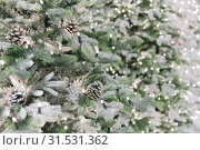 Купить «New Year and Christmas decor. Festive background with a copy space with a texture of decorative artificial shining snow-covered branches of Christmas trees of green color with cones.», фото № 31531362, снято 27 февраля 2019 г. (c) Светлана Евграфова / Фотобанк Лори