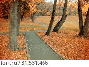 Купить «Осенний пейзаж. Fall landscape with colorful fall trees and orange fallen leaves. Fall deserted alley», фото № 31531466, снято 9 октября 2016 г. (c) Зезелина Марина / Фотобанк Лори