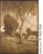 Купить «Motiv aus Pommern, 1895–96, printed 1902, Gum bichromate print, 77.7 x 55.5 cm (30 9/16 x 21 7/8 in.), Photographs, Hugo Henneberg (Austrian, 1863â€...», фото № 31541550, снято 17 мая 2017 г. (c) age Fotostock / Фотобанк Лори