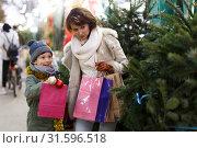 Family selecting fir tree. Стоковое фото, фотограф Яков Филимонов / Фотобанк Лори
