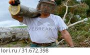 Купить «Lumberjack carrying wooden log in the forest 4k», видеоролик № 31672398, снято 13 августа 2018 г. (c) Wavebreak Media / Фотобанк Лори