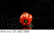 Купить «Bell pepper falling on water against black background 4k», видеоролик № 31687058, снято 18 июля 2018 г. (c) Wavebreak Media / Фотобанк Лори