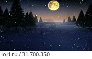 Купить «Falling snow and Christmas night starry sky with moon», видеоролик № 31700350, снято 2 ноября 2018 г. (c) Wavebreak Media / Фотобанк Лори