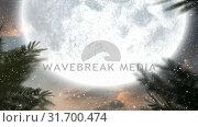 Купить «Winter scenery with full moon and falling snow», видеоролик № 31700474, снято 2 ноября 2018 г. (c) Wavebreak Media / Фотобанк Лори