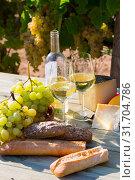 Купить «White wine with cheese, bread and grapes in vineyard», фото № 31704786, снято 21 февраля 2020 г. (c) Яков Филимонов / Фотобанк Лори