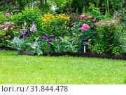 Купить «Фрагмент садового участка из ярких и разнообразных многолетних цветов», фото № 31844478, снято 26 июля 2019 г. (c) Людмила Капусткина / Фотобанк Лори
