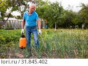 Купить «Man works with garden spray in the yard», фото № 31845402, снято 19 октября 2019 г. (c) Яков Филимонов / Фотобанк Лори