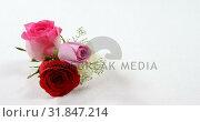 Купить «Bouquet of red, white and pink roses on black surface 4k», видеоролик № 31847214, снято 11 октября 2018 г. (c) Wavebreak Media / Фотобанк Лори