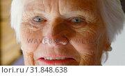 Купить «Close-up of Caucasian senior woman looking at camera in a comfortable home 4k», видеоролик № 31848638, снято 6 ноября 2018 г. (c) Wavebreak Media / Фотобанк Лори