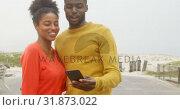 Купить «Front view of young black couple clicking selfie with mobile phone at beach on a sunny day 4k», видеоролик № 31873022, снято 14 ноября 2018 г. (c) Wavebreak Media / Фотобанк Лори