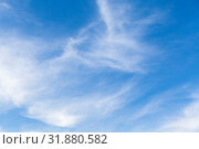 Blue sky with cirrus clouds at day. Стоковое фото, фотограф EugeneSergeev / Фотобанк Лори