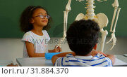 Купить «Front view of African american schoolgirl explaining skeleton model in classroom at school 4k», видеоролик № 31884370, снято 10 ноября 2018 г. (c) Wavebreak Media / Фотобанк Лори