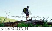 Купить «Low angle view of man walking through forest 4k», видеоролик № 31887494, снято 12 октября 2018 г. (c) Wavebreak Media / Фотобанк Лори