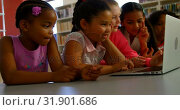 Купить «Schoolkids studying together on laptop at table 4k», видеоролик № 31901686, снято 10 ноября 2018 г. (c) Wavebreak Media / Фотобанк Лори