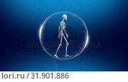Купить «Composition of skeleton walking in spinning globe », видеоролик № 31901886, снято 22 января 2019 г. (c) Wavebreak Media / Фотобанк Лори