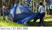 Купить «Friends setting up tent in the forest on a sunny day 4k», видеоролик № 31901986, снято 12 октября 2018 г. (c) Wavebreak Media / Фотобанк Лори