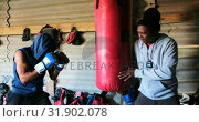 Купить «African American male boxer practicing boxing with trainer in fitness studio 4k», видеоролик № 31902078, снято 17 октября 2018 г. (c) Wavebreak Media / Фотобанк Лори