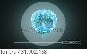 Купить «3D illustration of human brain», видеоролик № 31902158, снято 16 января 2019 г. (c) Wavebreak Media / Фотобанк Лори