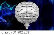 Купить « Animation of the top of brain against a binary codes and graphics», видеоролик № 31902238, снято 22 января 2019 г. (c) Wavebreak Media / Фотобанк Лори