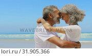 Купить «Side view of happy active senior African American couple embracing each other on the beach 4k», видеоролик № 31905366, снято 14 ноября 2018 г. (c) Wavebreak Media / Фотобанк Лори