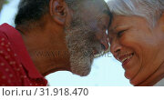 Close-up of active African American senior couple standing face to face in the garden of nursing hom. Стоковое видео, агентство Wavebreak Media / Фотобанк Лори