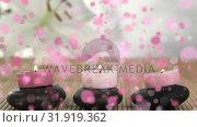 Купить «Animation of candles on pebbles surrounded by pink bubbles», видеоролик № 31919362, снято 5 марта 2019 г. (c) Wavebreak Media / Фотобанк Лори