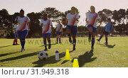 Купить «Female soccer team doing cardio exercises on soccer field. 4k», видеоролик № 31949318, снято 18 апреля 2019 г. (c) Wavebreak Media / Фотобанк Лори