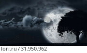 Купить «Fireworks and silhouette of a tree with the clouds and moon», видеоролик № 31950962, снято 14 июня 2019 г. (c) Wavebreak Media / Фотобанк Лори
