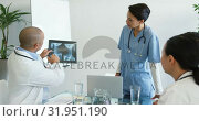 Купить «Doctors meeting with x-ray 4k», видеоролик № 31951190, снято 10 марта 2019 г. (c) Wavebreak Media / Фотобанк Лори