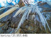 Купить «Long icicles dangle from the rock. Bottom view.», фото № 31951446, снято 23 апреля 2019 г. (c) Акиньшин Владимир / Фотобанк Лори