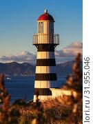 Купить «Петропавловский маяк», фото № 31955046, снято 5 октября 2018 г. (c) А. А. Пирагис / Фотобанк Лори