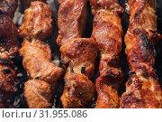 Шашлыки из свинины жарятся на мангале. Стоковое фото, фотограф А. А. Пирагис / Фотобанк Лори