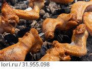 Купить «Куриный шашлык», фото № 31955098, снято 14 июля 2019 г. (c) А. А. Пирагис / Фотобанк Лори