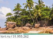 Beautiful beach with big rock and tree (2018 год). Редакционное фото, фотограф Александр Бекишев / Фотобанк Лори