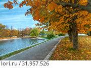Купить «Осенний пейзаж в городском парке с аллеей каштанов, водоемом и мостиком», фото № 31957526, снято 17 октября 2017 г. (c) Татьяна Белова / Фотобанк Лори