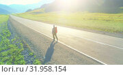 Купить «Flight over hitchhiker tourist walking on asphalt road. Huge rural valley at summer day. Backpack hiking guy.», видеоролик № 31958154, снято 2 августа 2018 г. (c) Александр Маркин / Фотобанк Лори