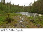 Купить «River Oulankajoki (Oulanka National Park) on rainy day. Kuusamo, Finland», фото № 31975030, снято 3 июля 2019 г. (c) Валерия Попова / Фотобанк Лори