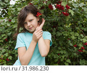 Купить «Девочка возле куста калины. Август», фото № 31986230, снято 5 августа 2019 г. (c) Александр Романов / Фотобанк Лори