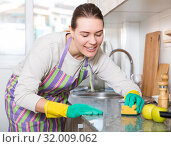 Купить «Female is caring about clean of kitchen», фото № 32009062, снято 29 марта 2018 г. (c) Яков Филимонов / Фотобанк Лори