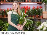 Купить «Friendly female flower shop owner offering blooming potted plants for sale», фото № 32009146, снято 20 мая 2019 г. (c) Яков Филимонов / Фотобанк Лори