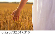 Купить «woman in white dress walking along cereal field», видеоролик № 32017310, снято 4 августа 2019 г. (c) Syda Productions / Фотобанк Лори
