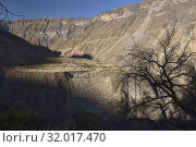 Steep trail out of LLahuar village in the Colca Canyon, Cabanaconde, Peru. Стоковое фото, фотограф Dave Stamboulis / age Fotostock / Фотобанк Лори