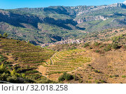 The Comarca Priorat is a famous wine-growing area where the prestigious wine of the Priorat and Montsant is produced. In the background the village La Vilella Alta. Wine grows here since 12th century. Стоковое фото, фотограф Zoonar.com/Stefan Laws / easy Fotostock / Фотобанк Лори