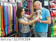 Купить «woman and man with dog looking for collar», фото № 32019554, снято 7 мая 2018 г. (c) Яков Филимонов / Фотобанк Лори
